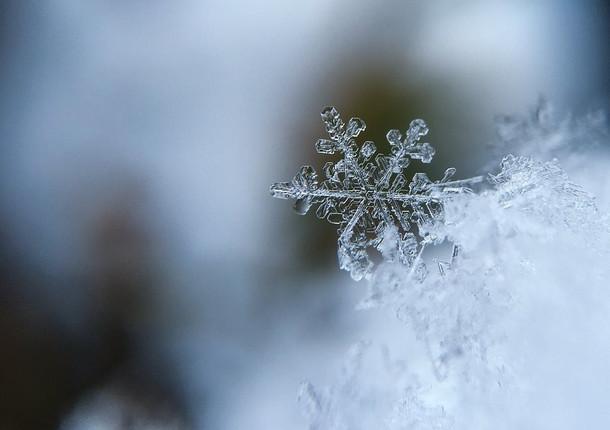В Сочи пошел снег
